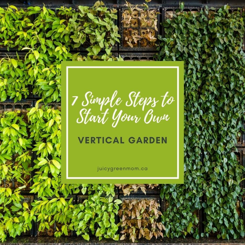 7 Simple Steps to Start Your Own vertical garden juicygreenmom