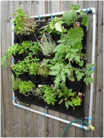 vertical garden pocket planter