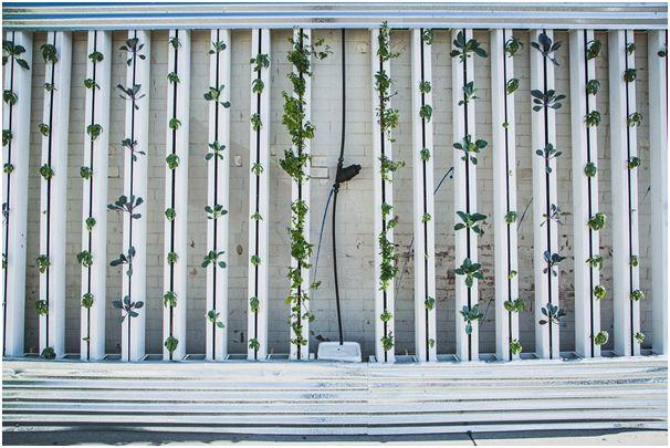 vertical gardens juicygreenmom
