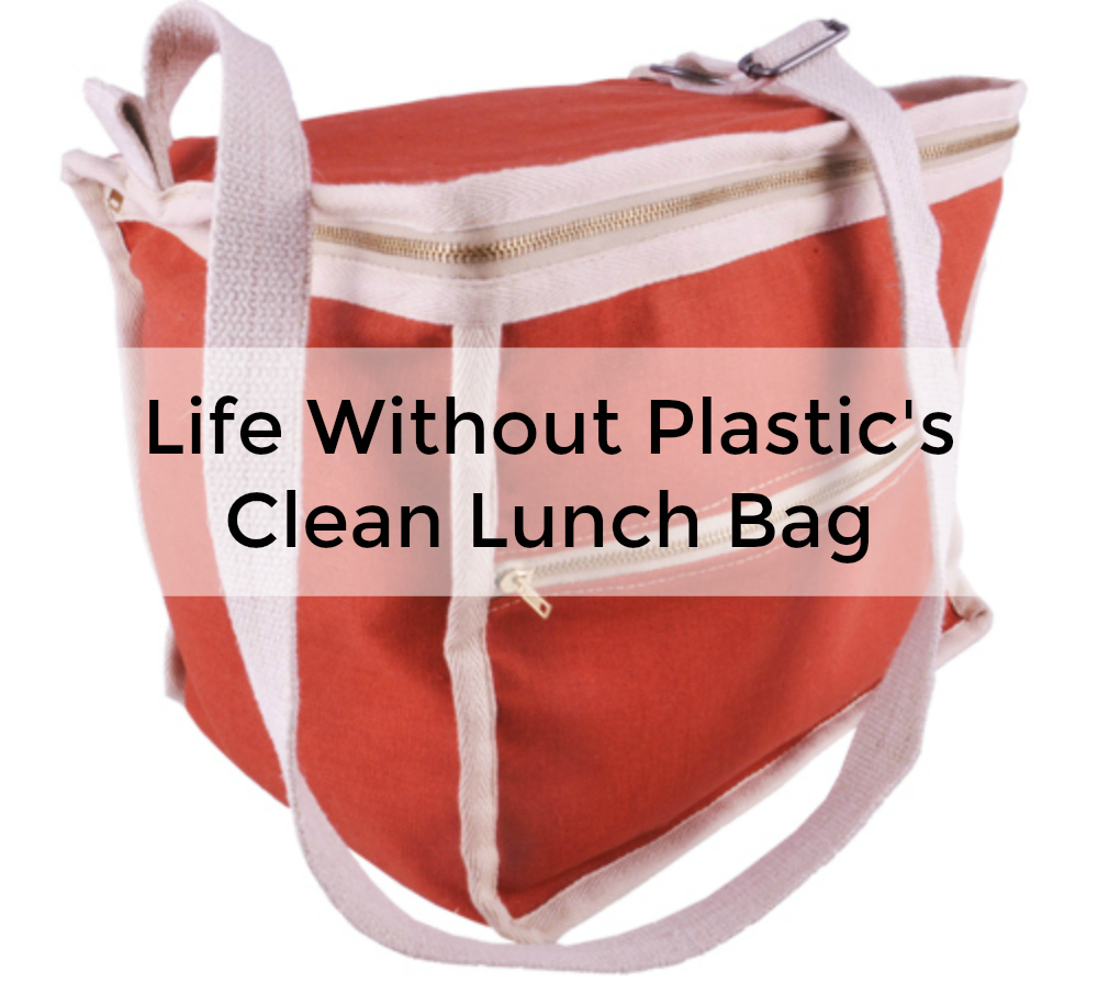 clean lunch bag life without plastic kickstarter