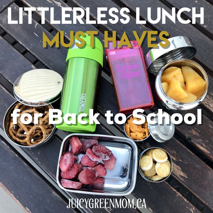 litterless lunch must haves for back to school juicygreenmom