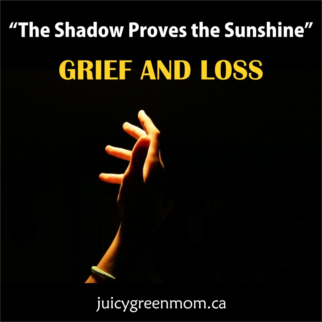 the shadow proves the sunshine grief and loss juicygreenmom