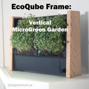 ecoqube frame vertical microgreen garden juicygreenmom