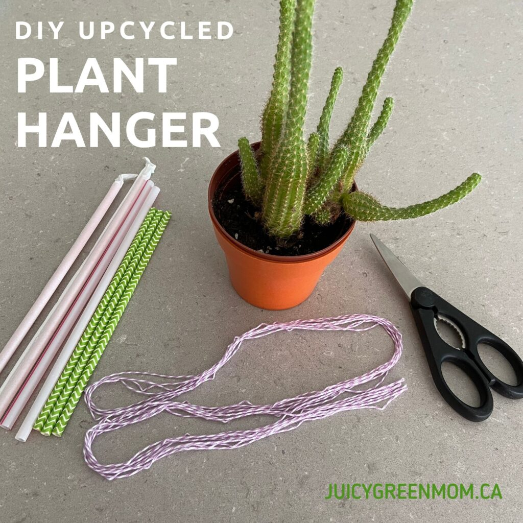 DIY upcycled plant hanger materials juicygreenmom