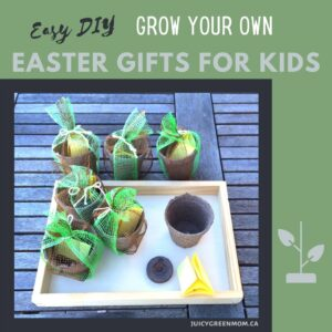 Easy-DIY-grow-your-own-easter-gifts-for-kids-juicygreenmom