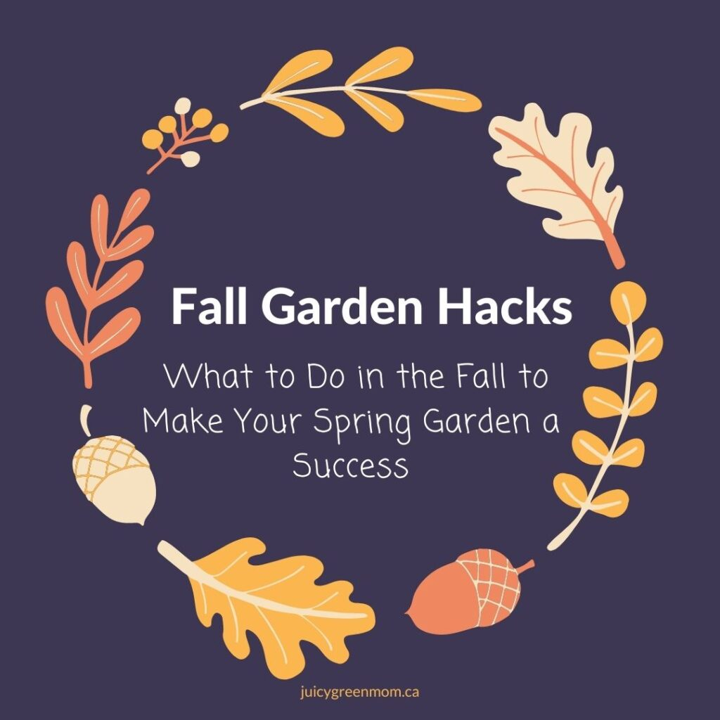Fall Garden Hacks_ What to Do in the Fall to Make Your Spring Garden a Success juicygreenmom