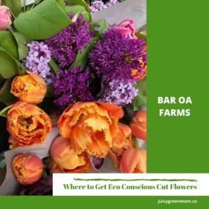 Bar OA Farms Eco Conscious Cut Flowers #YEG juicygreenmom