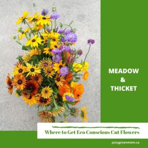 Meadow and Thicket Eco Conscious Cut Flowers #YEG juicygreenmom
