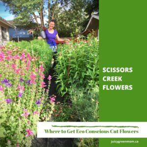 scissors creek flowers Eco Conscious Cut