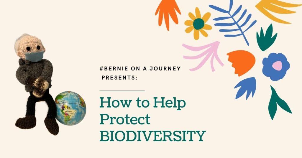 How to Help Protect Biodiversity Bernie on a Journey juicygreenmom