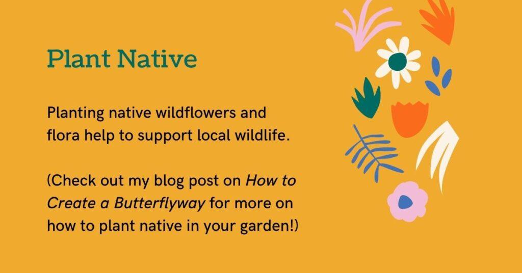plant native biodiversity juicygreenmom