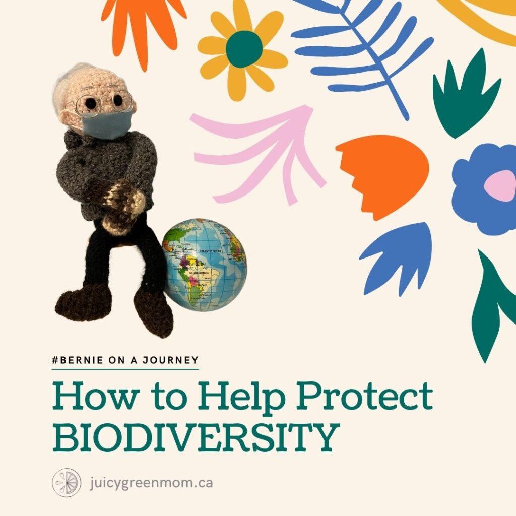 BernieonaJourney how to help protect biodiversity juicygreenmom