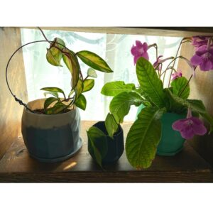 recycled plastic planters from the rogerie juicygreenmom