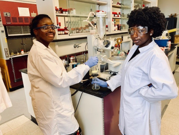 CaRE2 Summer Undergraduate Trainees working in the lab at FAMU