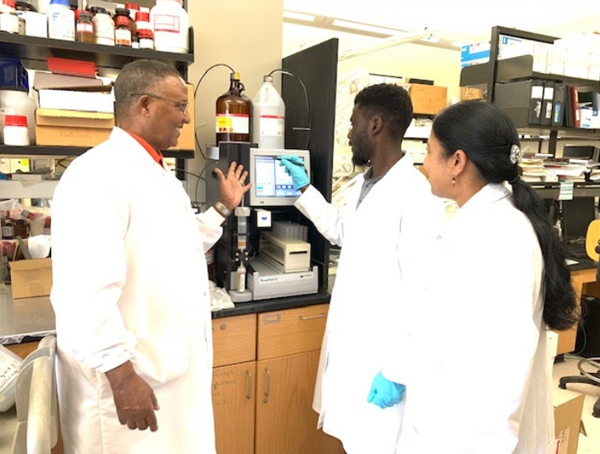 CaRE2 Summer Undergraduate Trainees working in the lab with Dr. Redda at FAMU