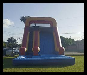 Slide 20 pies $220.00