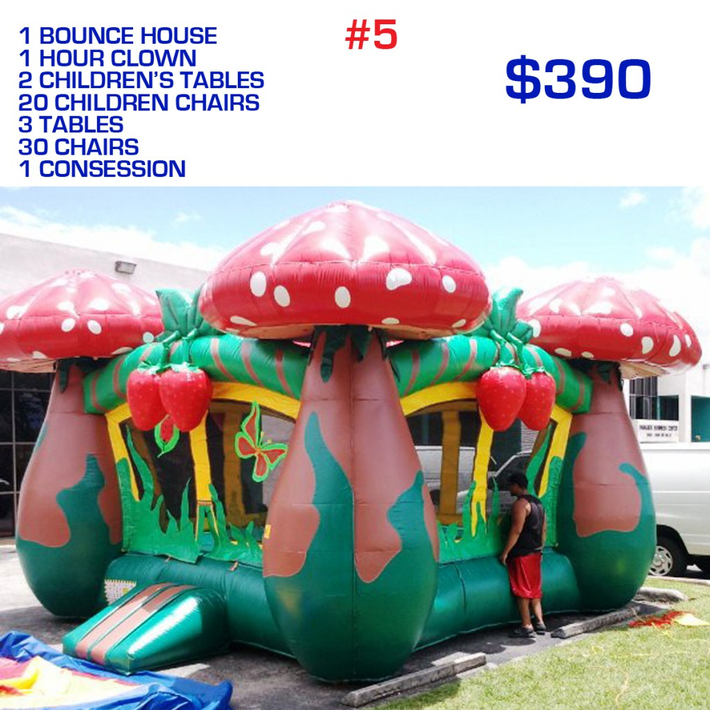 party rental Miami package #5