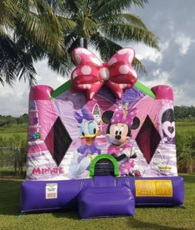 Disney-theme-bounce-house-rentals