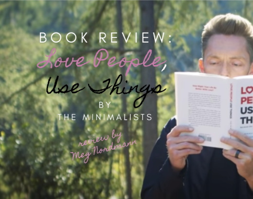 the minimalists book review love people use things
