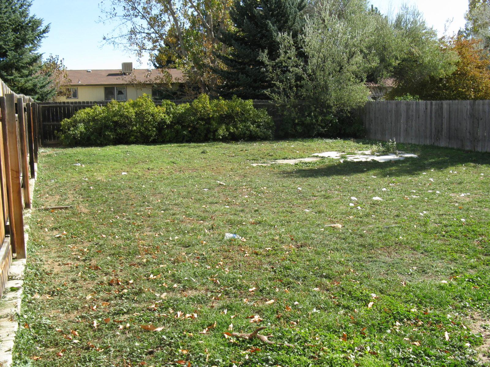2168 Dexter: Fenced In Backyard