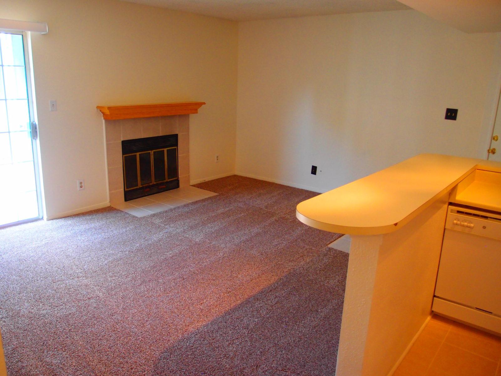 CB Living Fireplace