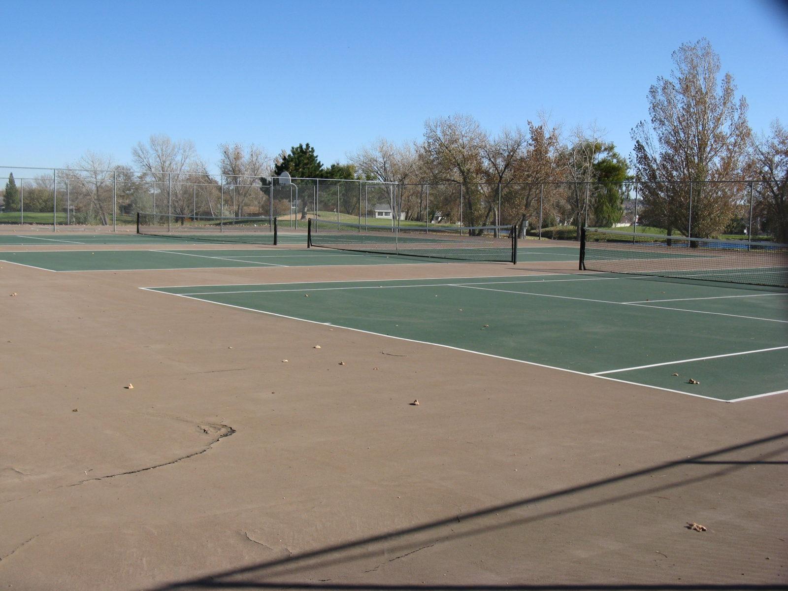 231 tennis