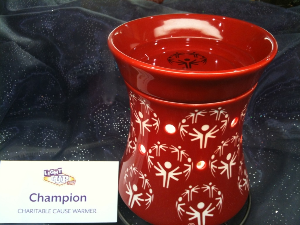 Special Olympics Charitable Cause Scentsy Warmer