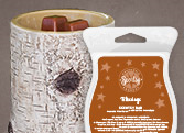 Scentsy Warmer of the Month December 2014