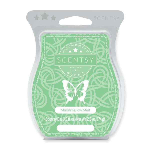 Top Scentsy Products to Buy Before They're Gone!