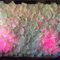 Flower Wall Backdrop by Designer Weddings