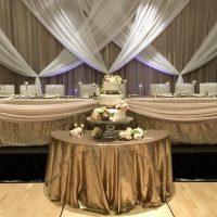 BAckdrop Package by Designer Weddings - mink drape