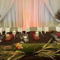 brown taffeta tablecloth