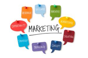 healthcare-vendor-management-digital-marketing-website