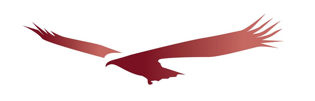 condor-big