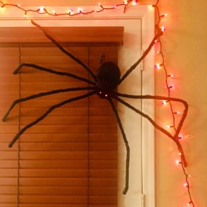Spooky spider 50 inches