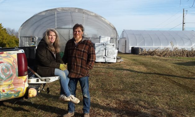 Family Greenhouse Thrives