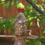RedFish Recycling DIY projects