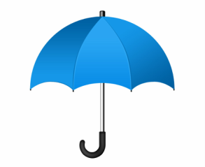 Blue Umbrella Books