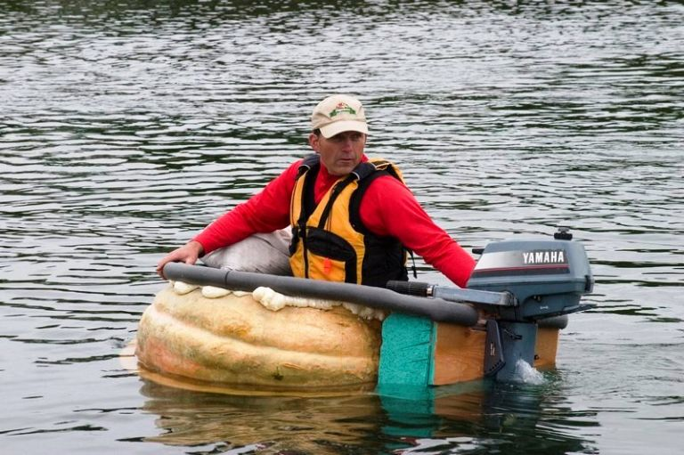 Pumpkin boats Regatta 6