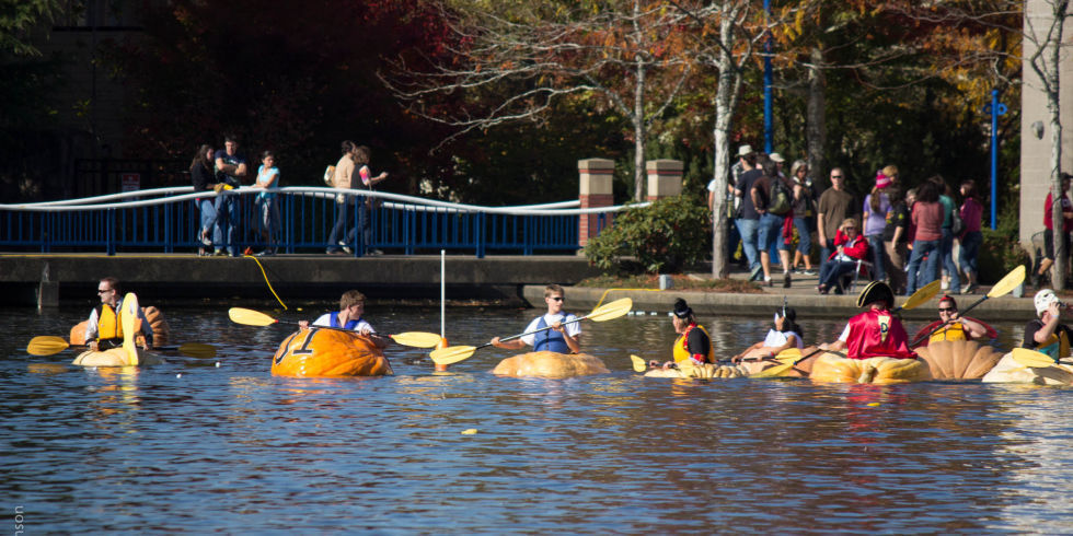 Pumpkin boats Regatta