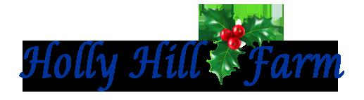 hollyhill-logo