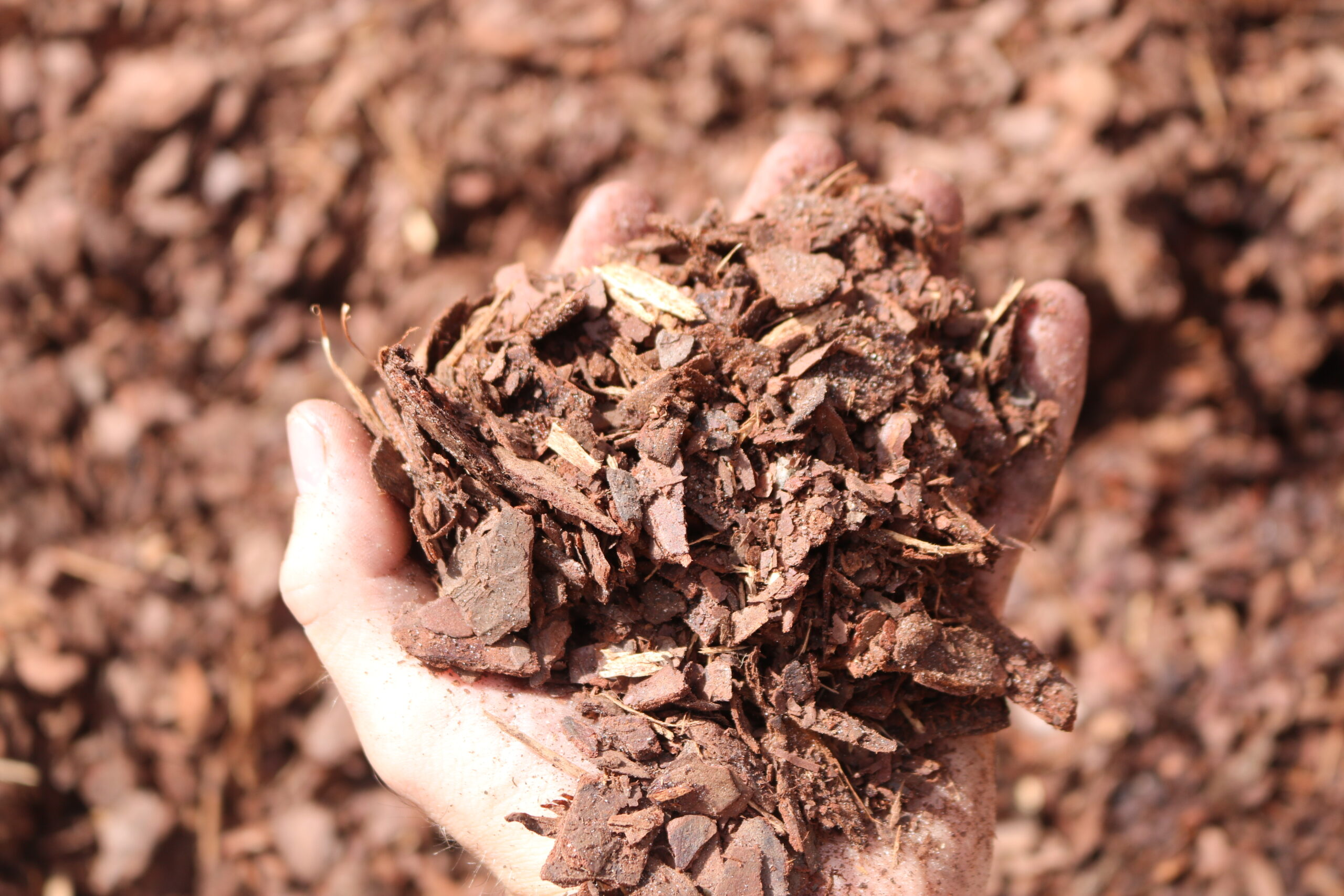 Marietta Mini Nugget Mulch