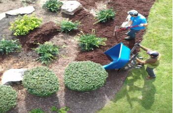 PSK Mulch Installation