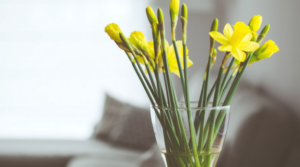 Friday Home and Garden Blog Linkup