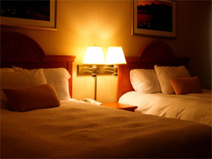 accomodation hotel pest control