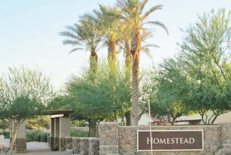 Homes for sale in Homestead subdivision in Maricopa