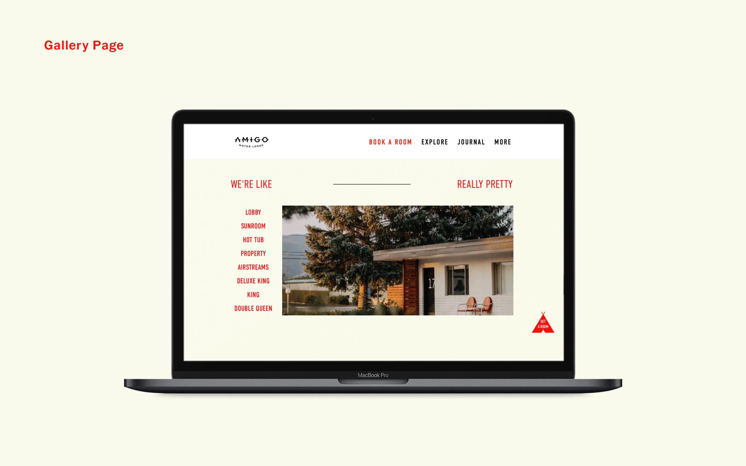 Amigo-04-Gallery