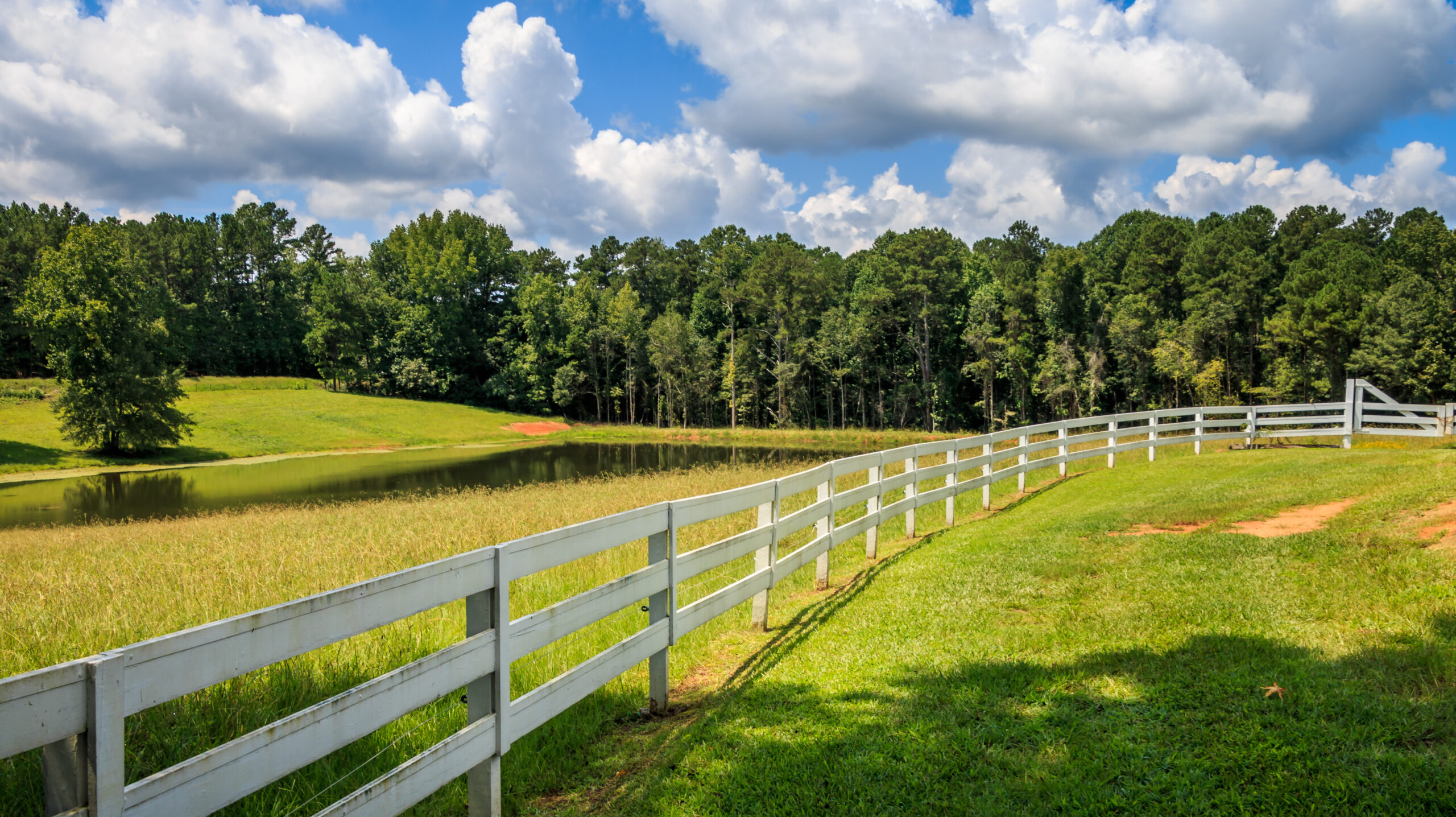 What You Should Know About Easements
