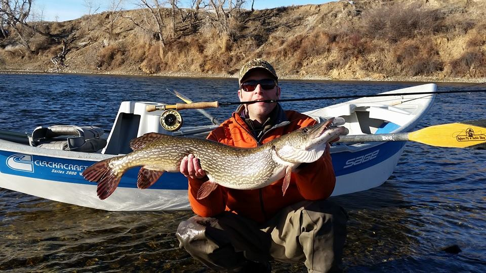 If you happen to catch one of these in the River, please kill them.  Nice fish Nathan!