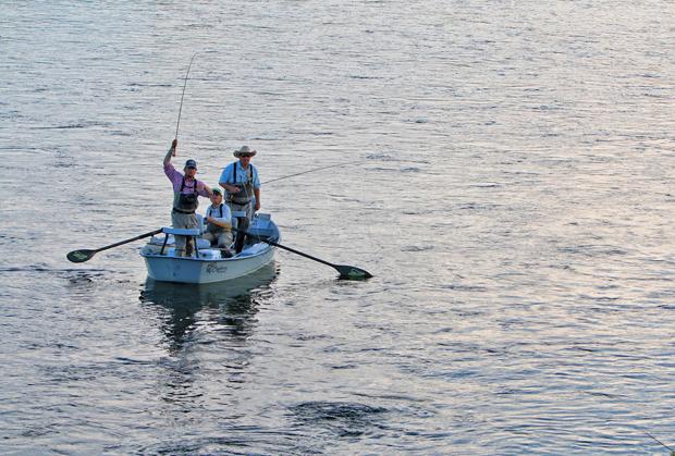 Bighorn River fly fishing